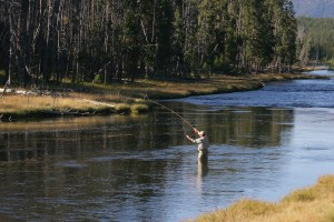 Jackson Hole Fly Fishing