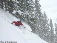 Jackson Hole Powder Skiing